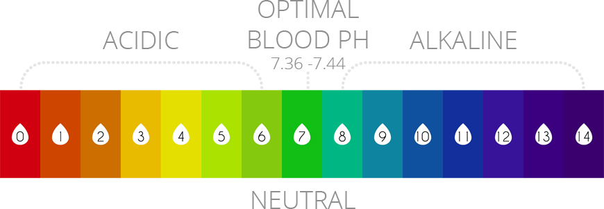 acidic vs alkaline ph-chart